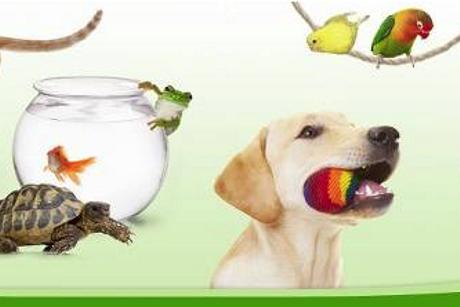ZooPlus. Zoologiczny sklep internetowy